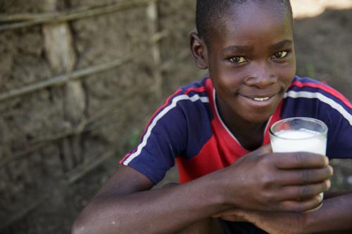 More Than 100 000 Farmers To Benefit In Kenya Uganda And