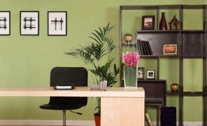 feng shui colors for office Coloring Book