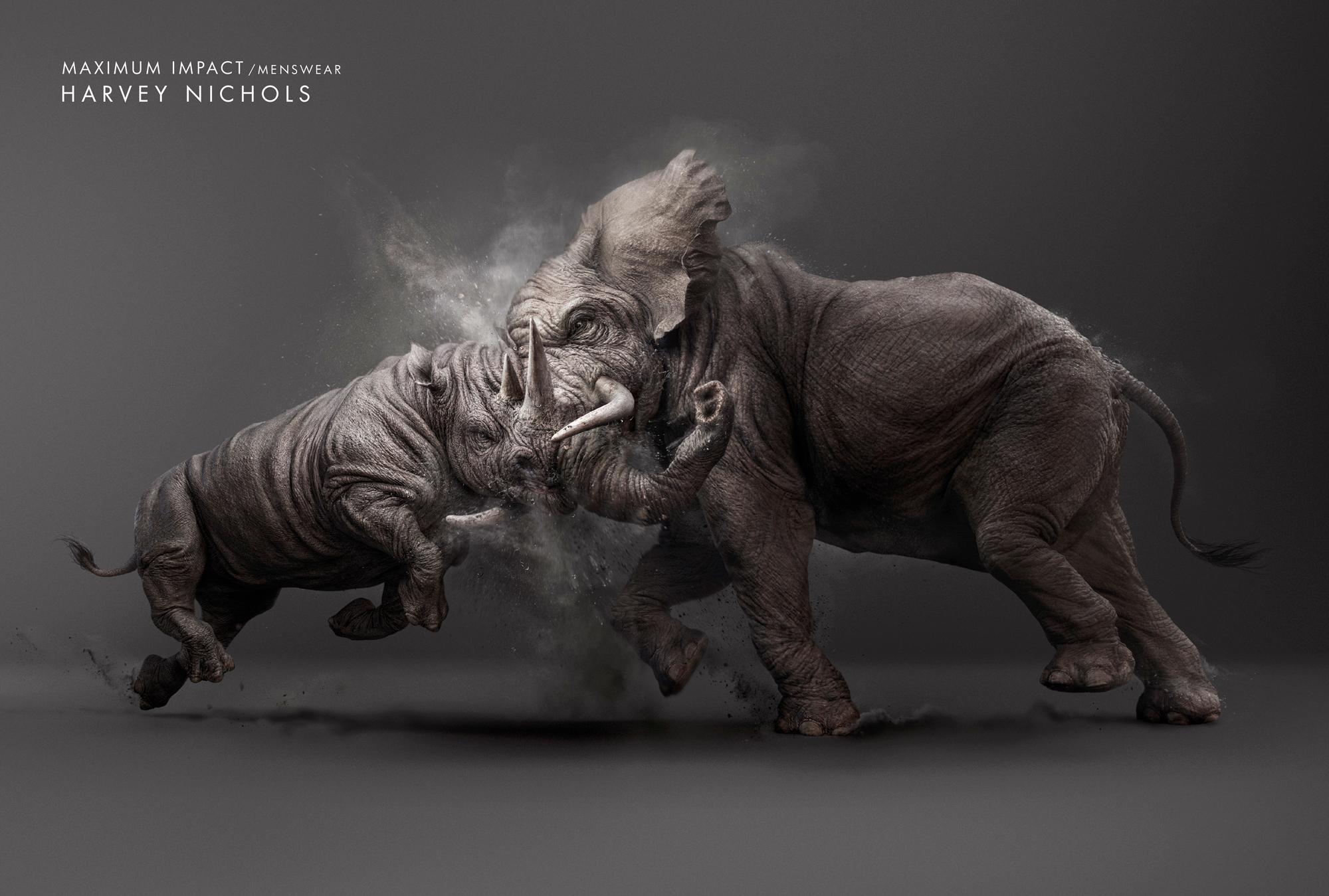 Pertarungan Gajah vs Badak, menang mana ?
