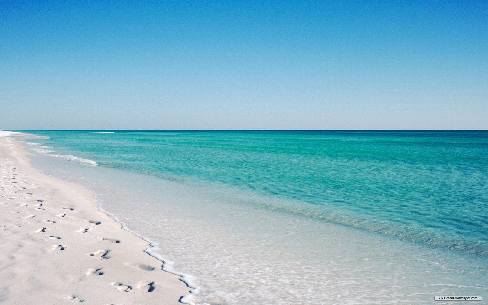 Tis' The Season to be in Florida - Littlegate Publishing
